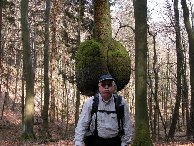 [FIL OUVERT] le bois sous toutes ses formes - Page 6 01042012