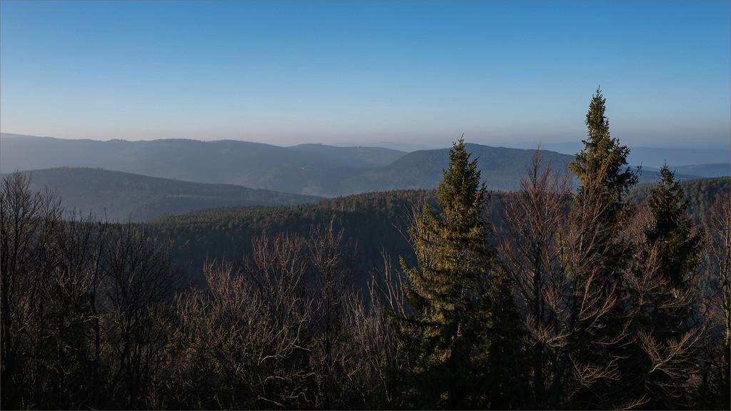 Derniers rayons sur les Vosges 2018-011