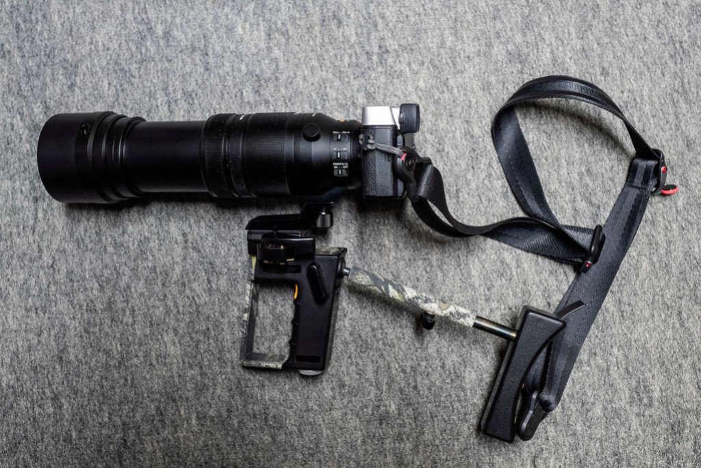 Pana/Leica 100/400mm 2018-044
