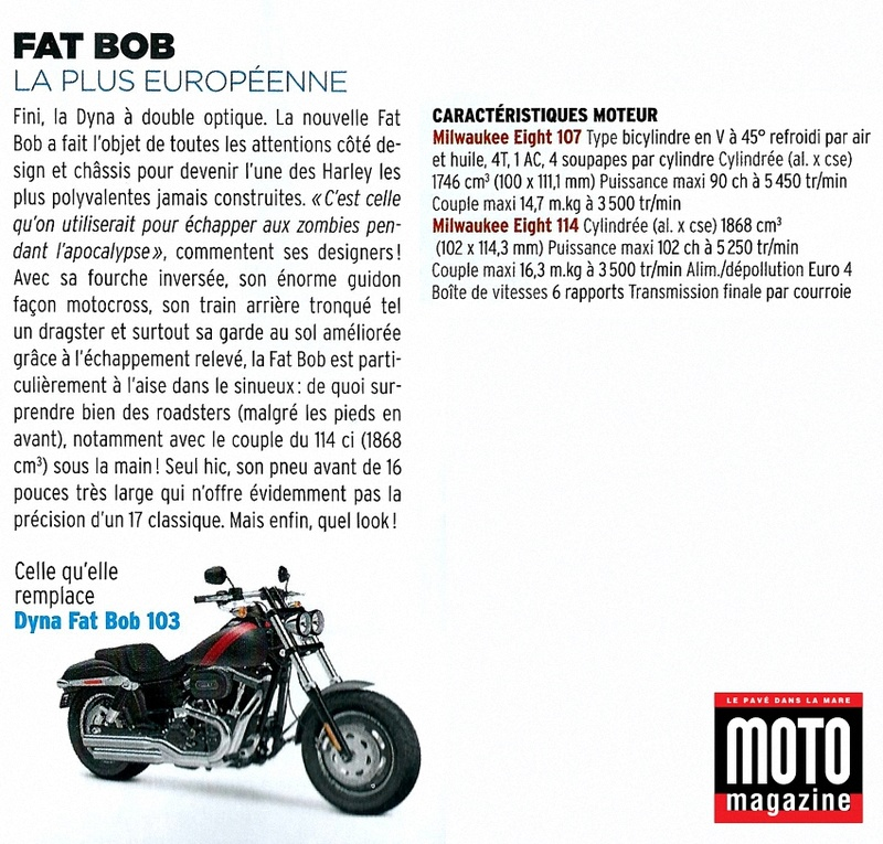 FAT-BOB 2018 - Page 13 Softai16