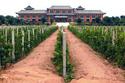 Vins de Poldévie Vins_p10