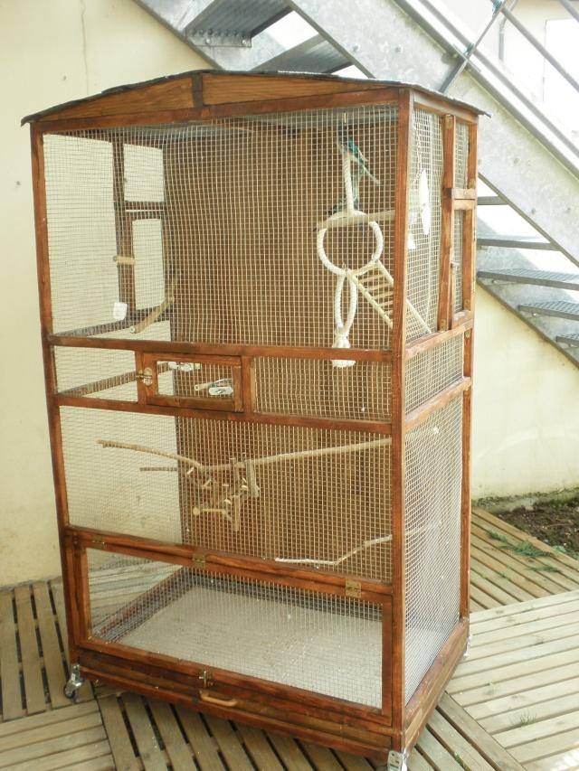 Création d'une cage extérieure. De A à Z!! P3290017