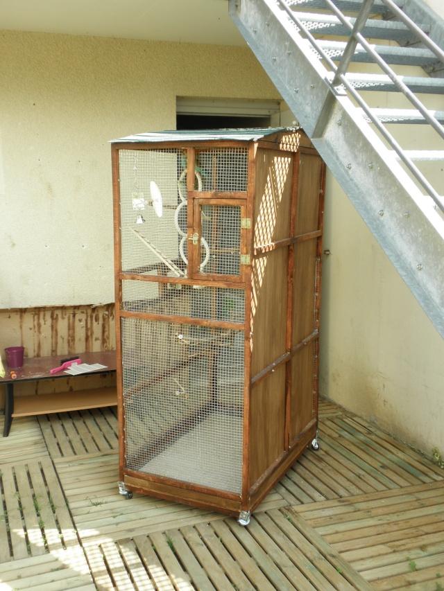 Création d'une cage extérieure. De A à Z!! P3290018
