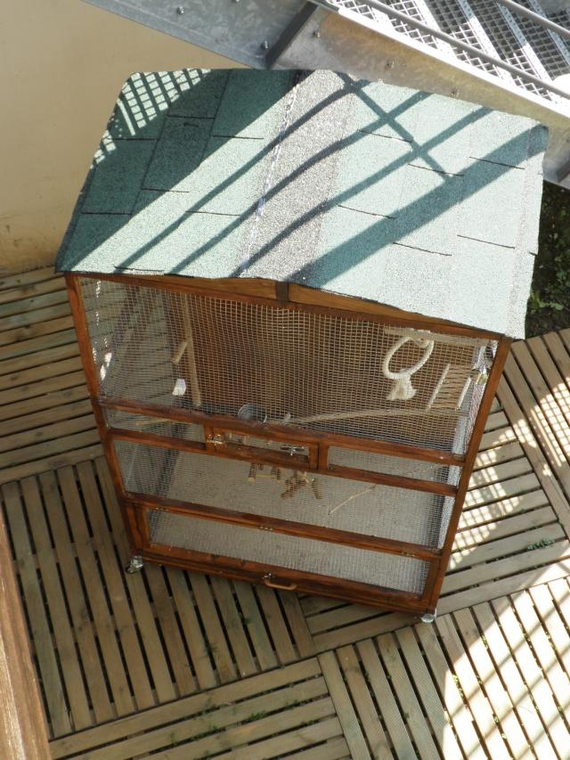 Création d'une cage extérieure. De A à Z!! P3290019