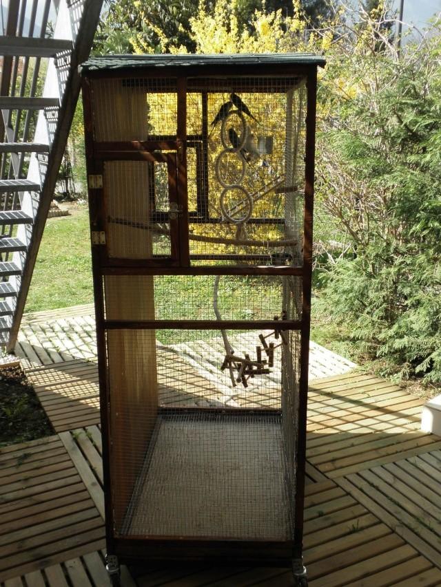 Création d'une cage extérieure. De A à Z!! P3290020