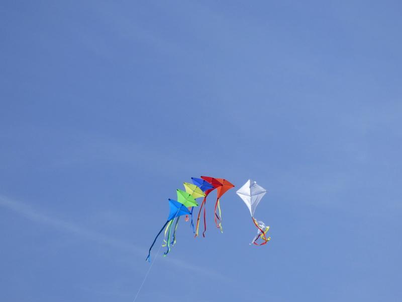 Into the sky (nos photos, nos vidéos) P1130412