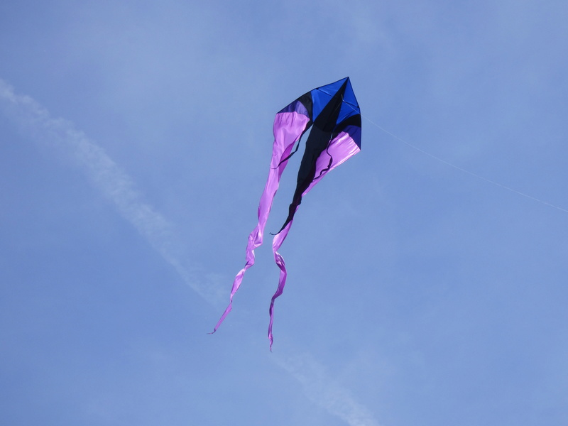 Into the sky (nos photos, nos vidéos) P1130413