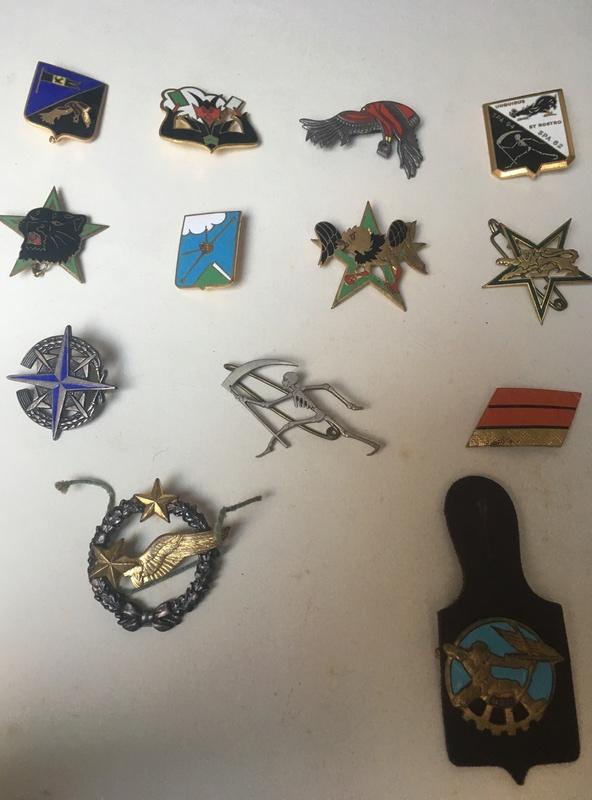 insignes/badges pilote FR escadron de chasse 1110