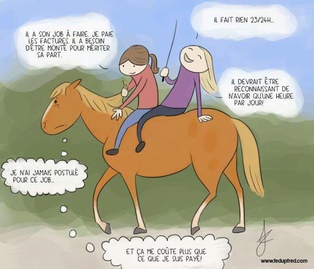 Monter à cheval en positif: est-ce vraiment possible? - Page 26 Fb_img11