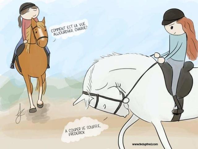Monter à cheval en positif: est-ce vraiment possible? - Page 26 Fb_img12
