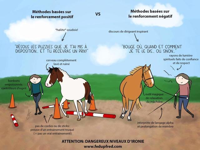 Monter à cheval en positif: est-ce vraiment possible? - Page 26 Fb_img13