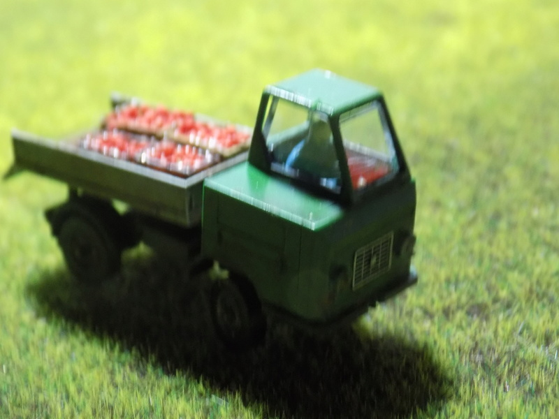 Multicar M22 (Auhagen) - Seite 2 Dscn6211