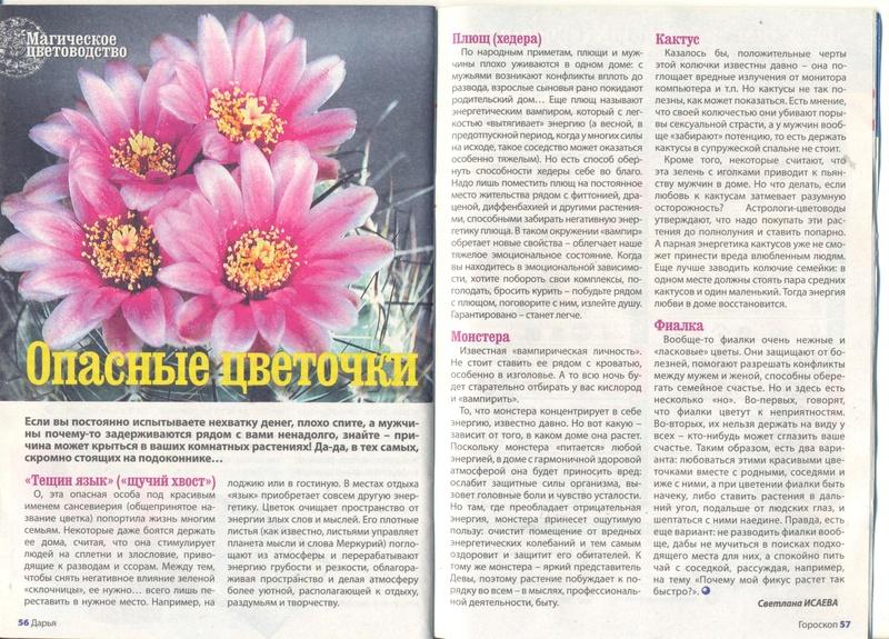 Магия растений 0_6ed710