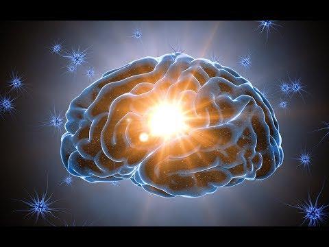 La conscience intuitive extraneuronale Hqdefa10