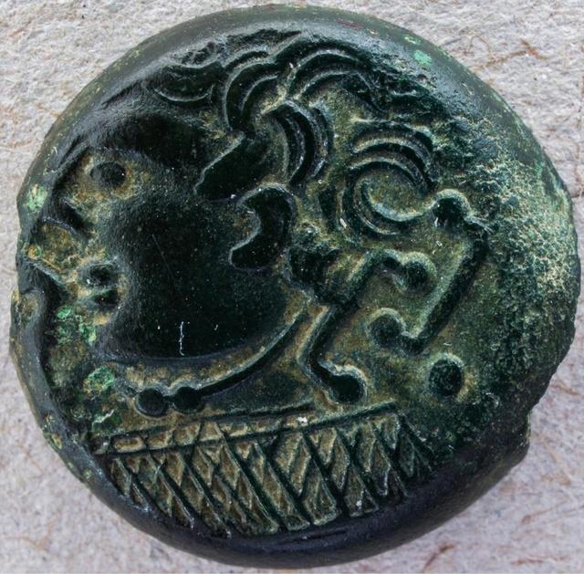 (Suessions) Bronze au Filet de toute beauté  Image_10
