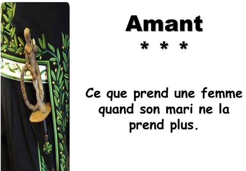 L'Académie Française vient de réviser les définitions de son dictionnaire Captu127
