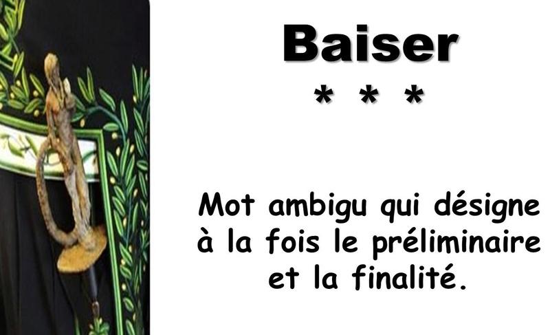 L'Académie Française vient de réviser les définitions de son dictionnaire Captu130