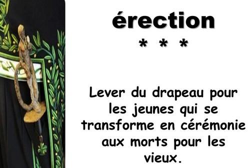 L'Académie Française vient de réviser les définitions de son dictionnaire Captu135