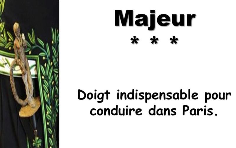 L'Académie Française vient de réviser les définitions de son dictionnaire Captu137