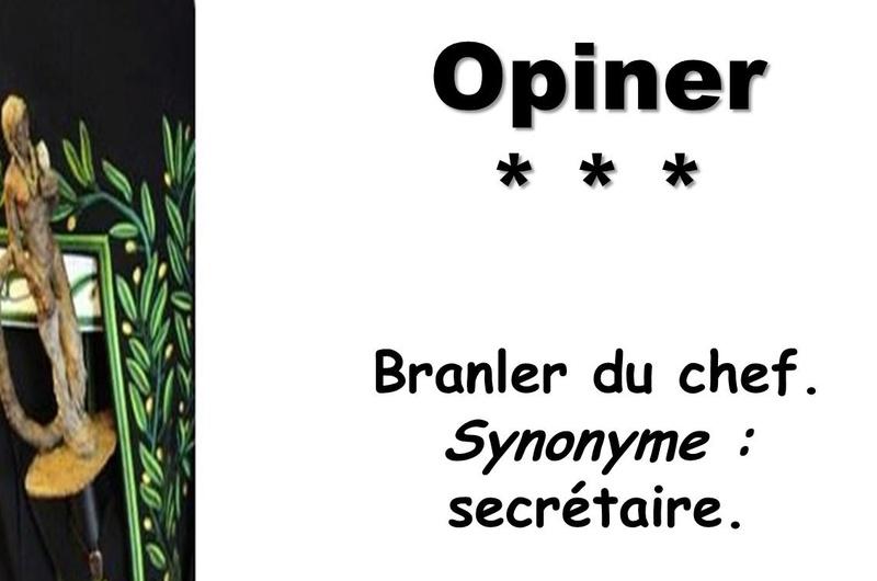 L'Académie Française vient de réviser les définitions de son dictionnaire Captu142