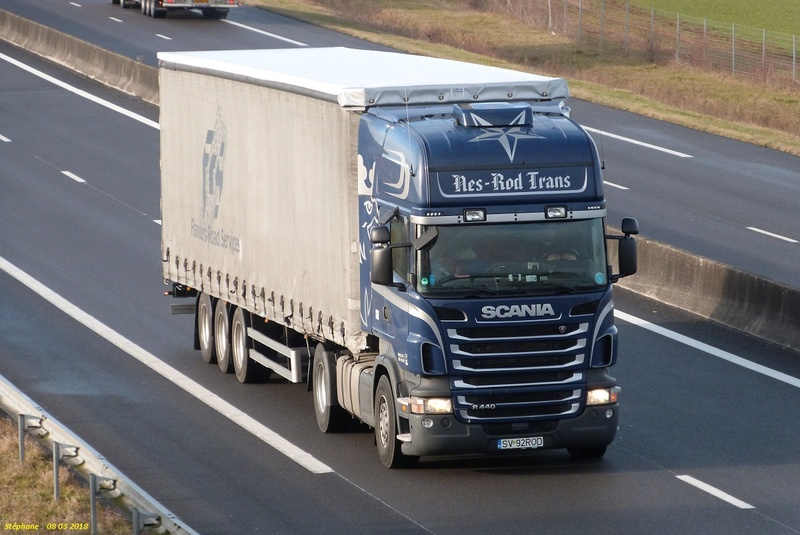 Nes-Rod Trans  (Suceava) P1410655