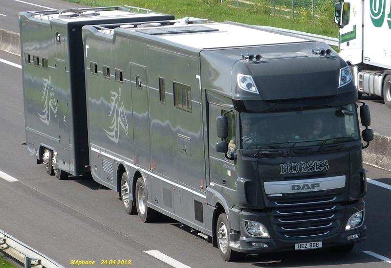 Transports de chevaux - Page 8 P1420570