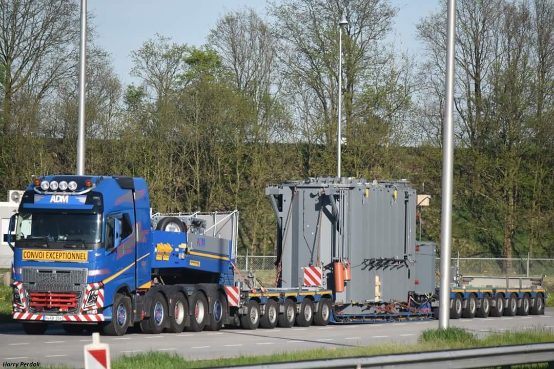 ADM Team Heavy Weight  (Westerlo) Smart714
