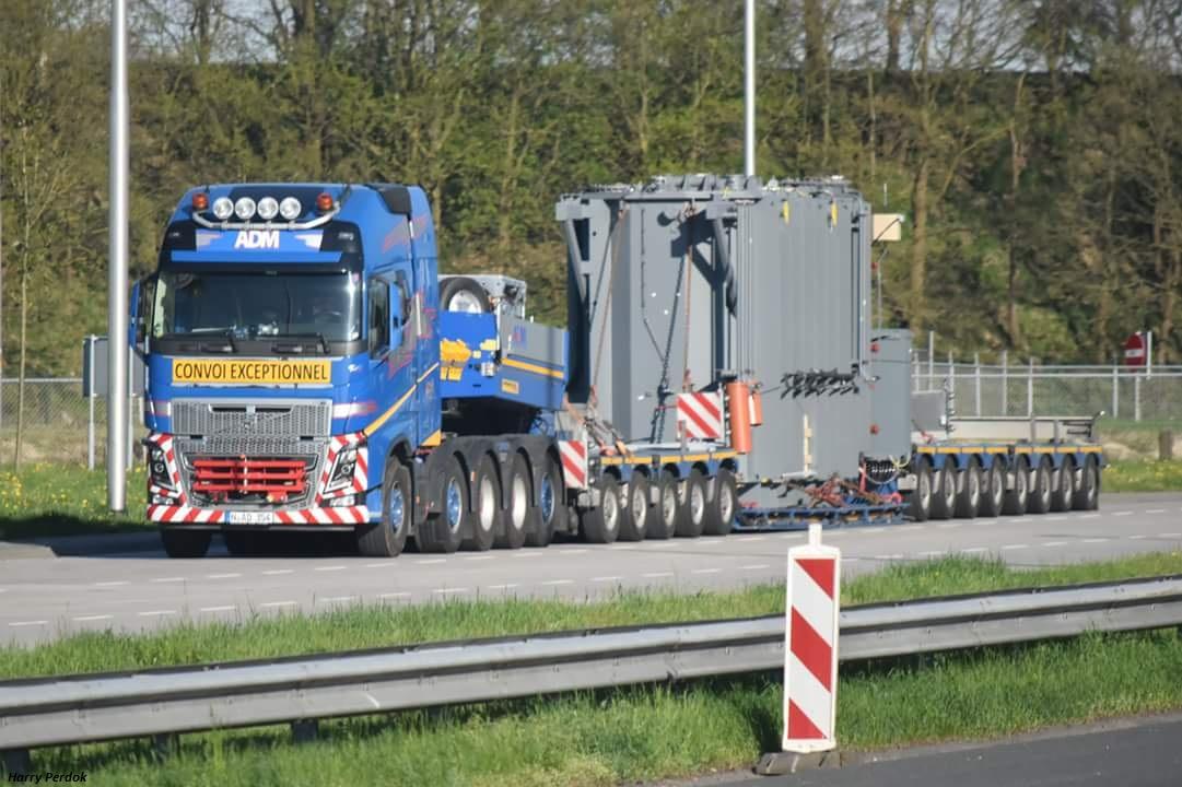 ADM Team Heavy Weight  (Westerlo) Smart715