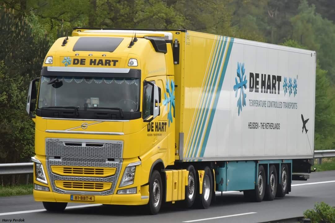 De Hart (Heusden) Smart770