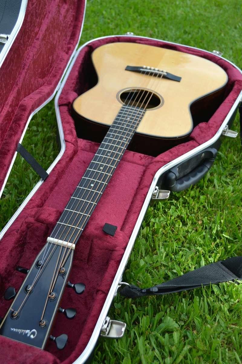 VDS ou ECHANGE guitare Chatelier Ziricote (ECHANGEE) Dsc_0112
