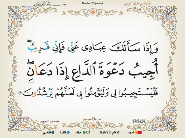 الآية 186 من سورة البقرة الكريمة المباركة Oa_18610