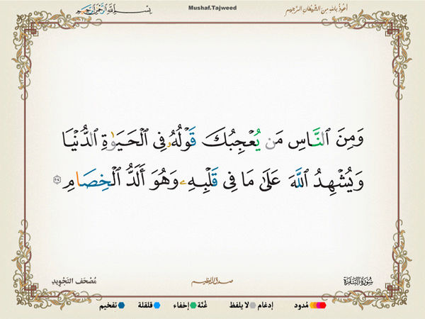 الآية 204 من سورة البقرة الكريمة المباركة Oa_20410