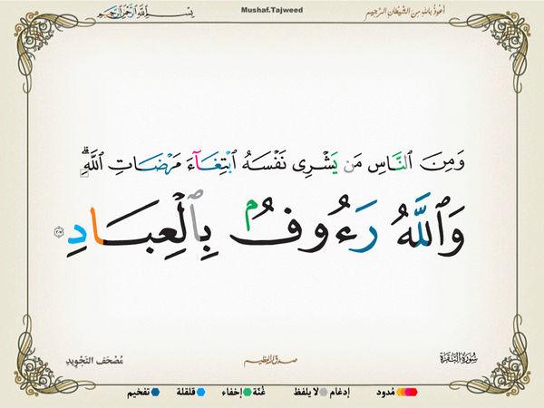 الآية 207 من سورة البقرة الكريمة المباركة Oa_20710