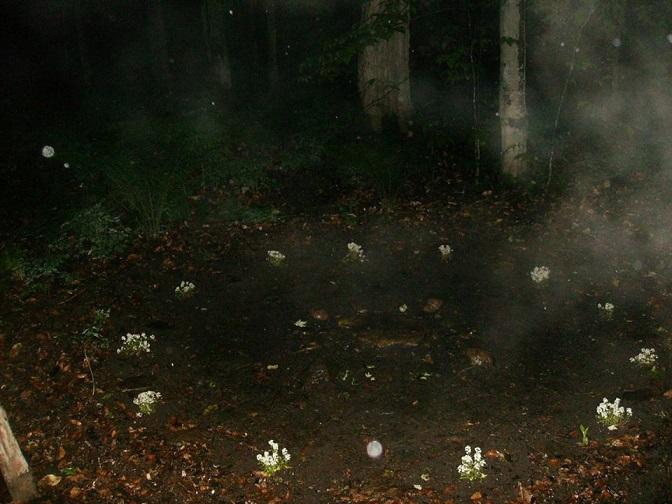 l'Alchimie des Runes et la Séphira Cercle10