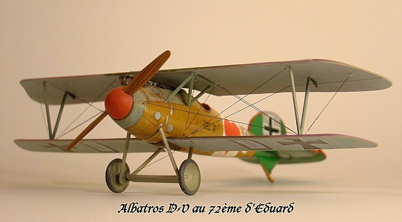 Albatros D.Va Aa_alb10