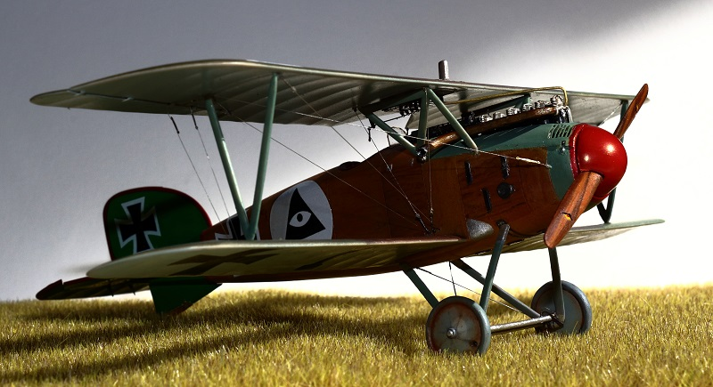 [cage à poules ] - Albatros D III - Eduard - 1/48ème. Terminé - Page 2 Img_3725