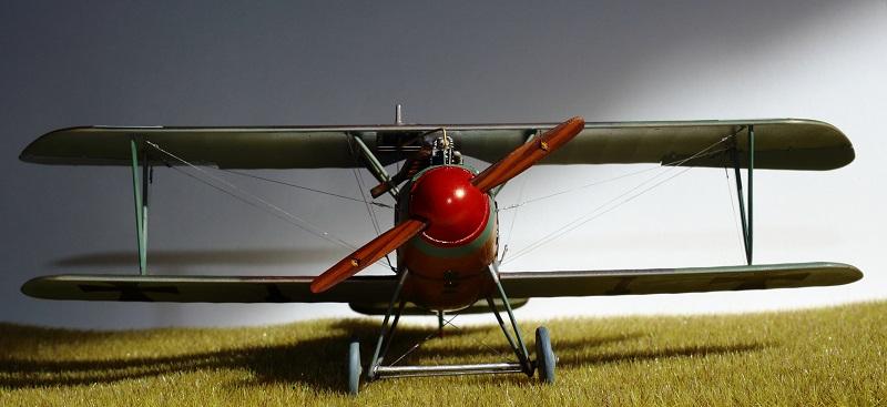 [cage à poules ] - Albatros D III - Eduard - 1/48ème. Terminé - Page 2 Img_3726