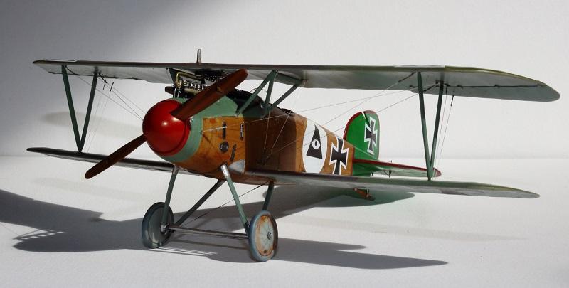 [cage à poules ] - Albatros D III - Eduard - 1/48ème. Terminé - Page 2 Img_3729