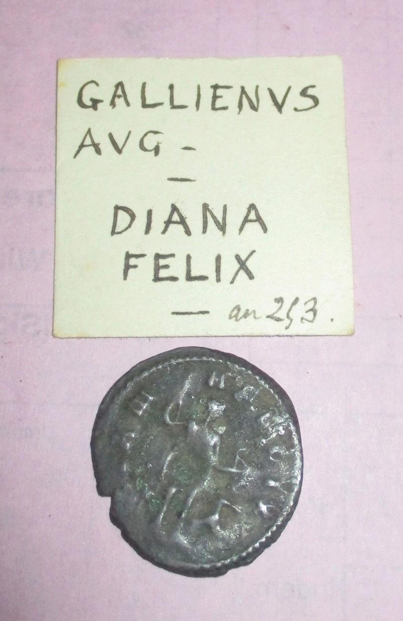 A Gallienus coin from Algeria Gall0210