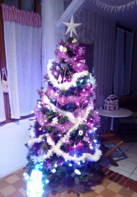 Noël 2017 24550512