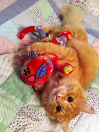 Le temple des chats - Page 5 Chat_j10