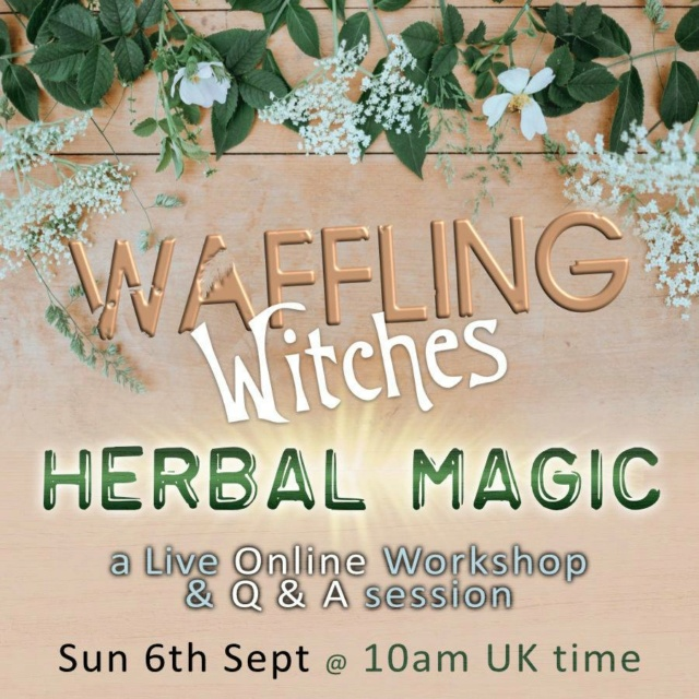 Waffling Witches Live - Sun 6th September 11682910
