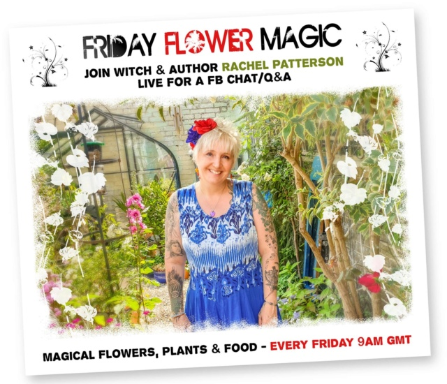 Flower Magic live chat/Q&A 95499610