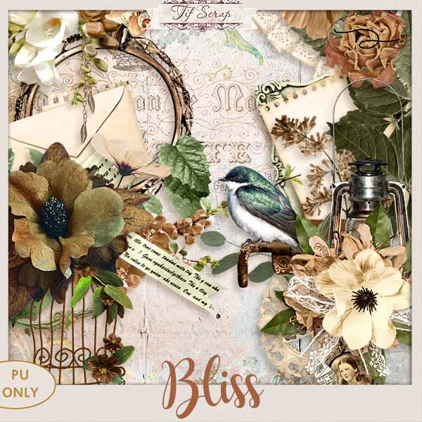 Bliss 16/01 Ts_bli10