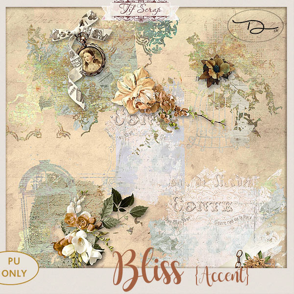 Bliss 16/01 Ts_bli15