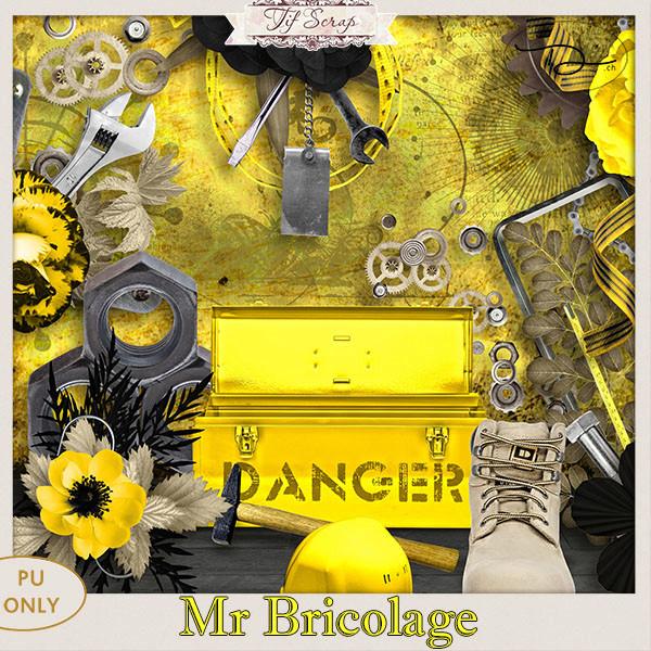 Mr Bricolage 27/02/2018 Ts_mrb10