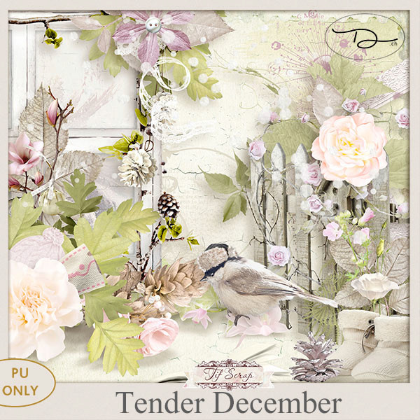 Tender December 1/12 Ts_ten10