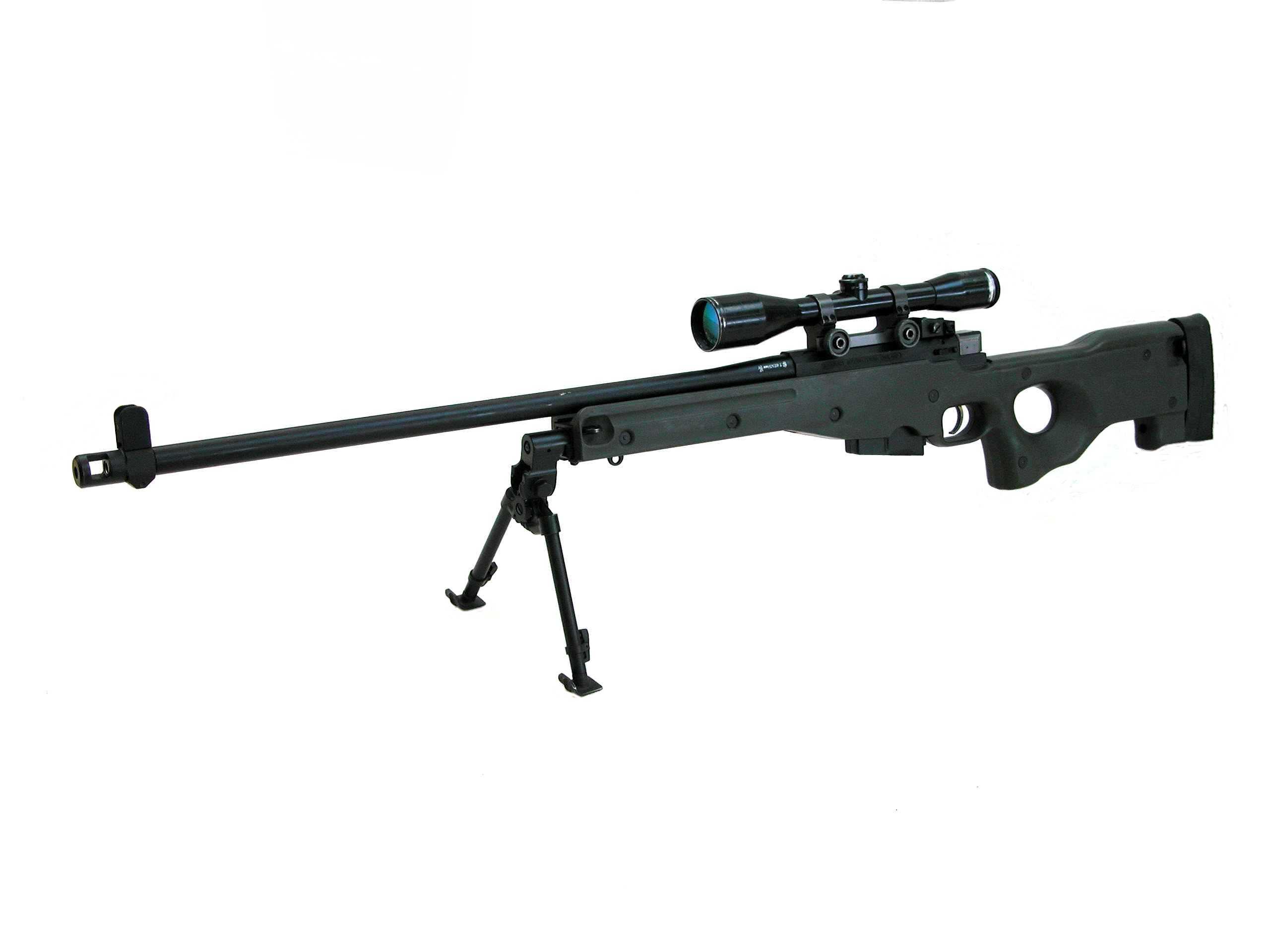 accuracy international  Dscn5010