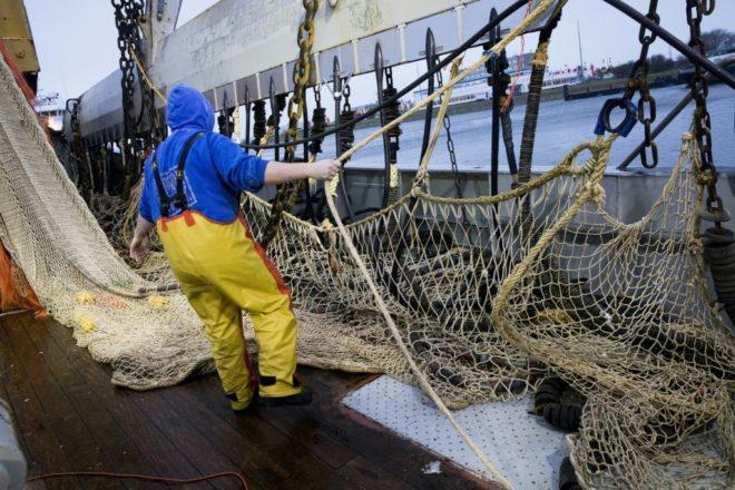 Hourra : l'Assemblée soutient à l'unanimité l'interdiction de la pêche électrique 26833210
