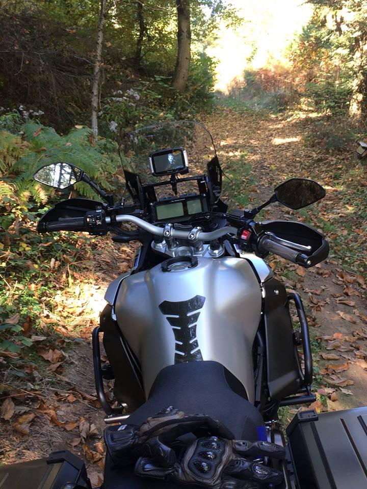 Vos plus belles photos de moto - Page 14 22406310